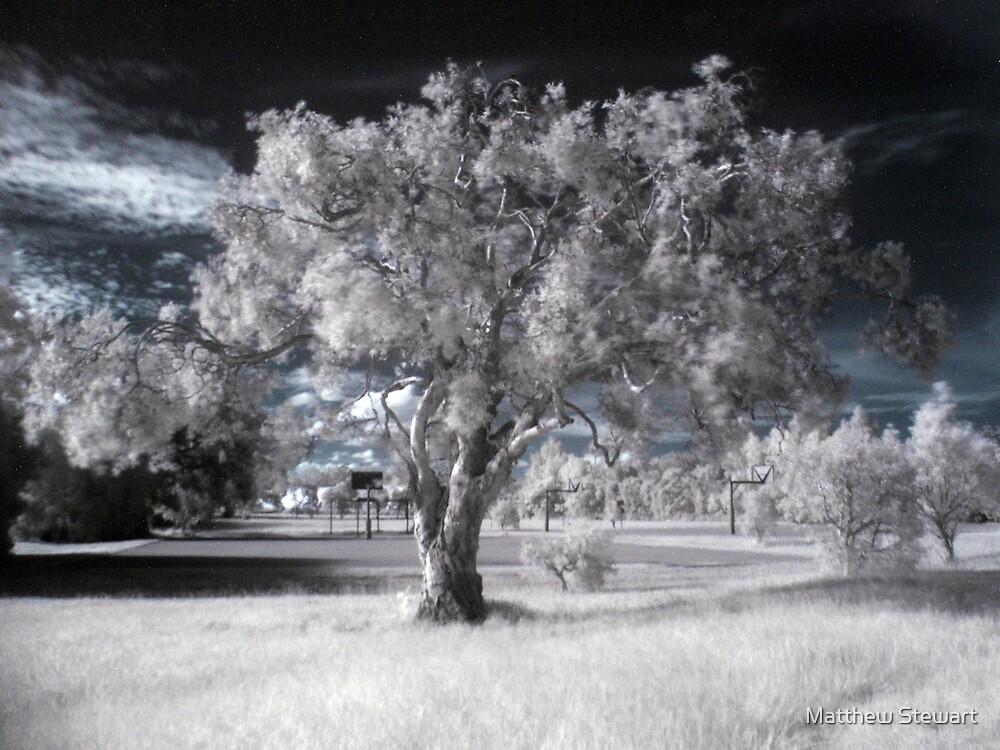 Desolate by Matthew Stewart