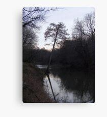 bear creek Canvas Print