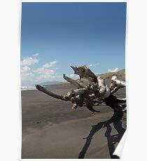 Beach sculpture Poster