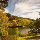 Mount Lofty Botanic Gardens by SusanAdey