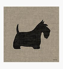 Scottish Terrier Silhouette(s) Photographic Print