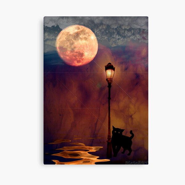 Night Life Canvas Print