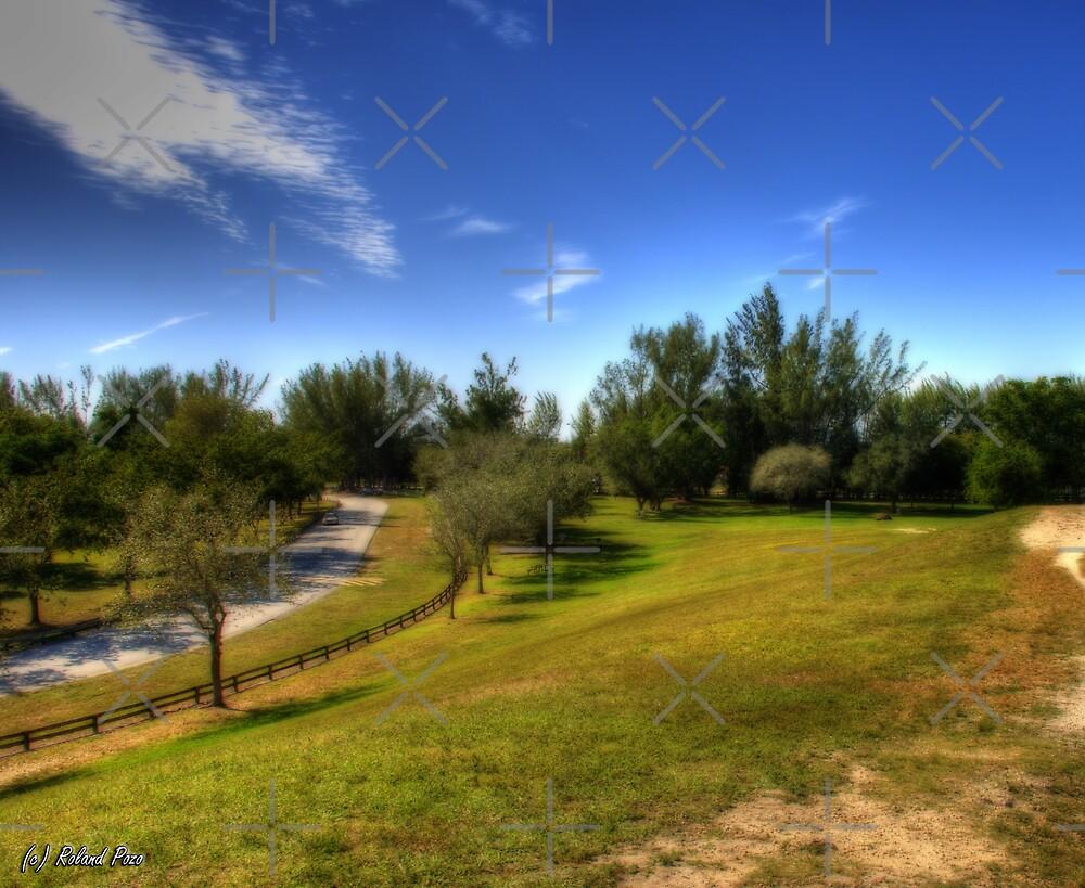 Hillside Hike by photorolandi
