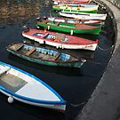 colored boats (lake garda/italy) by srphotos