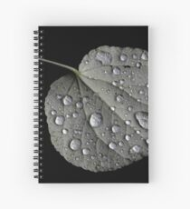 Rain Drops on a Leaf Spiral Notebook