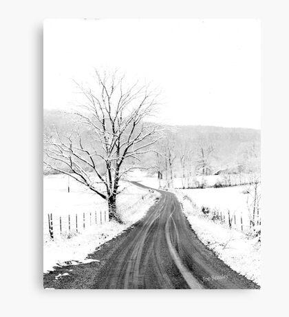 McGee Cove Road Metal Print