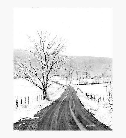 McGee Cove Road Photographic Print