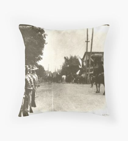 Confederate Hertage Throw Pillow