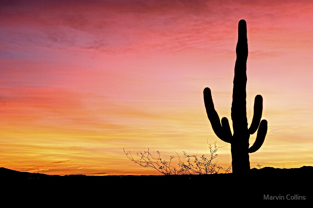 Arizona Sunrise by Marvin Collins