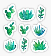 Aquarell Sukkulenten Sticker