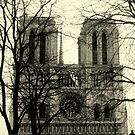 NOTRE DAME de PARIS by MEV Photographs