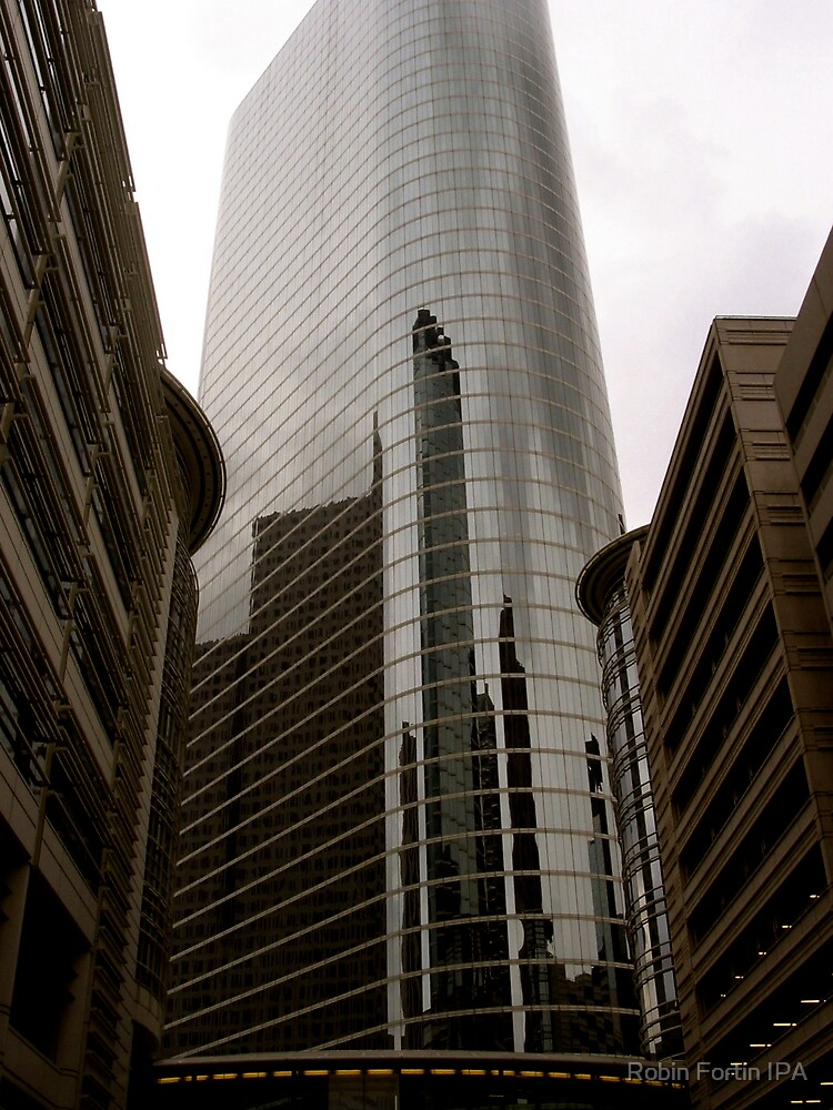 TALL Building and/or Tall Mirror? by Robin Fortin IPA