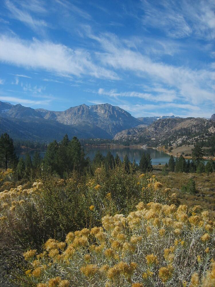 June Lake, CA by stellablue