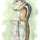 Chipmunk on a Fence Post by skidgelstudios