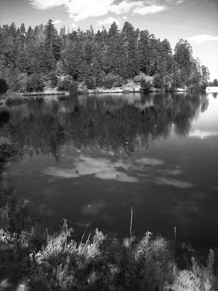 Goldwater Lake, Prescott, AZ by stellablue