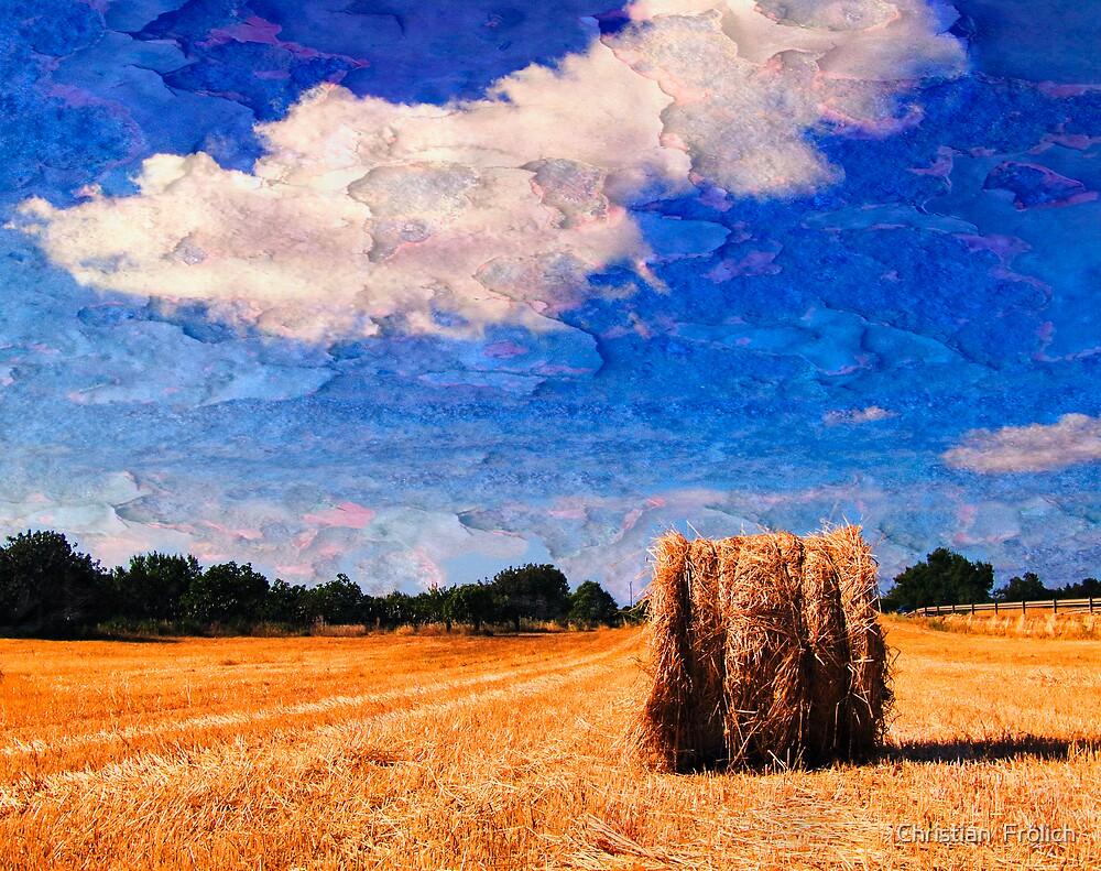Countryside 1 by Christian  Frölich