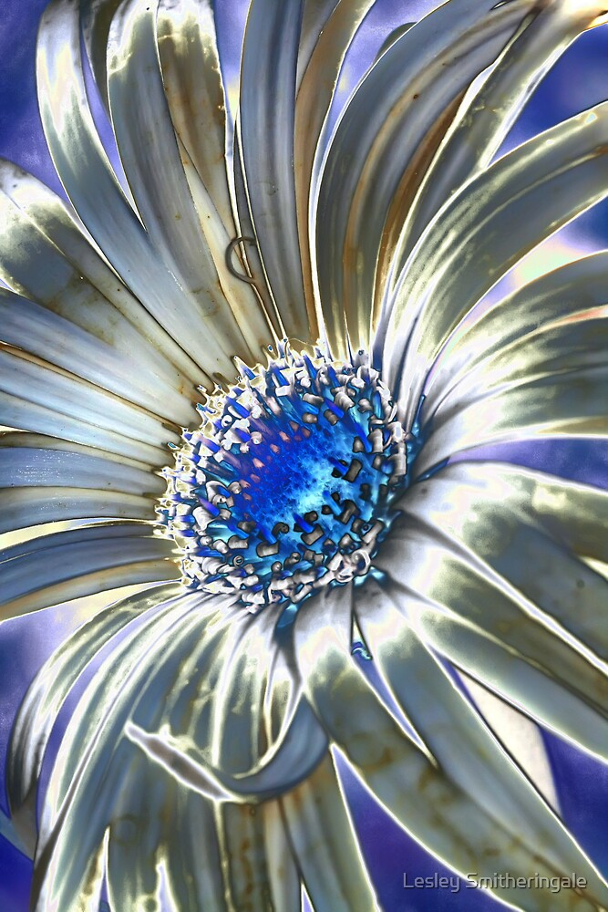 Abstract Daisy I by Lesley Smitheringale