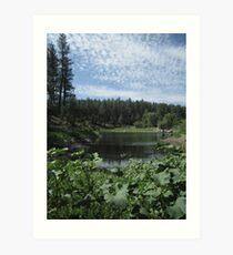 Goldwater Lake, Prescott, Arizona Art Print