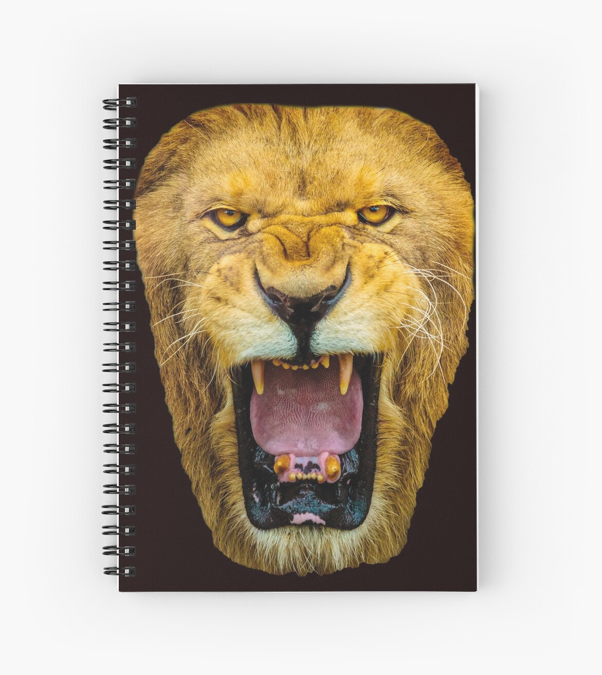 Lion Face by Dave  Knowles