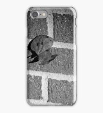 Back to the Wall iPhone Case/Skin