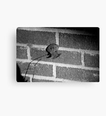 Back to the Wall Canvas Print