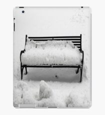 SNOW SCENE 8 iPad Case/Skin