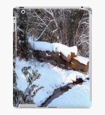 SNOW SCENE 9 iPad Case/Skin