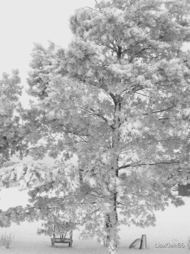 Snow  by LisaKlein66