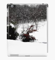 SNOW SCENE 6 iPad Case/Skin