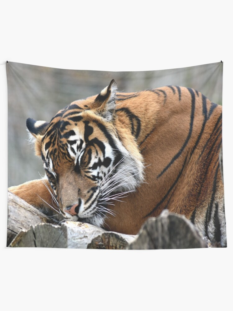 Alternate view of Sleeping tiger Wall Tapestry