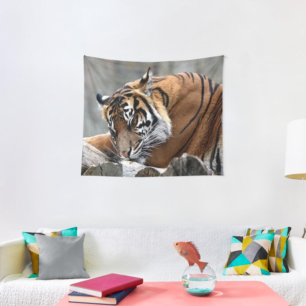 Sleeping tiger Tapestry