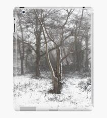 SNOW SCENE 7 iPad Case/Skin