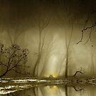 Enigmatic Passage by Igor Zenin