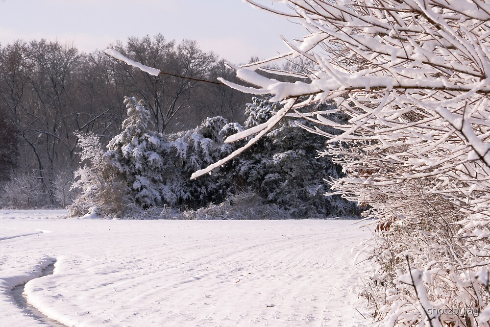 Snowy Field and Woods II by shotzbyjay