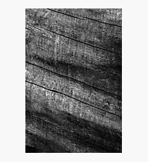 Textures and Patterns Photographic Print