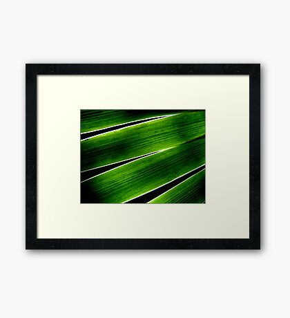 White Lines Framed Print