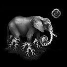 Elephant - Root Chakra by Daniel Schmidt