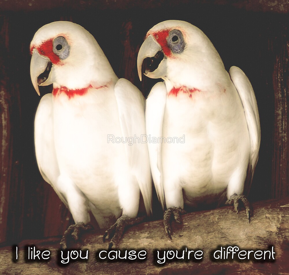 I like you cause you're different by RoughDiamond