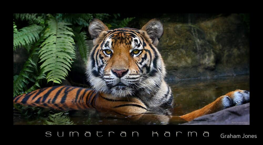 Sumatran Karma by Graham Jones