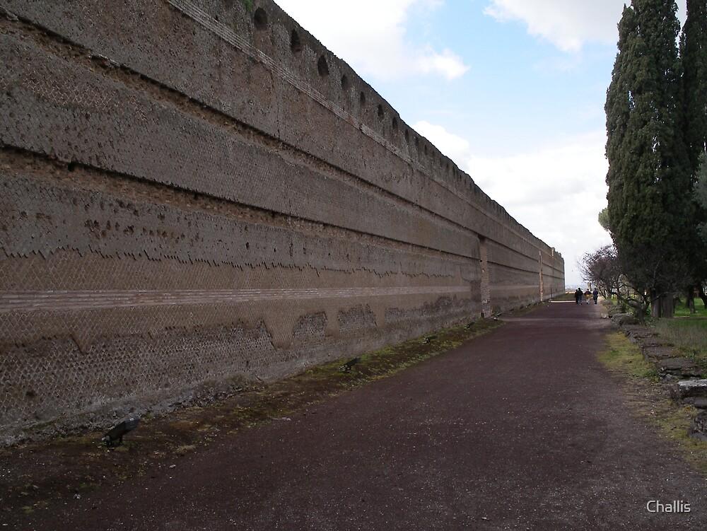 The Wall around Hadrians Villa by Challis