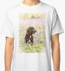 Bluebells and spaniel Classic T-Shirt