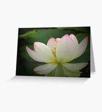 Lotus in light Greeting Card
