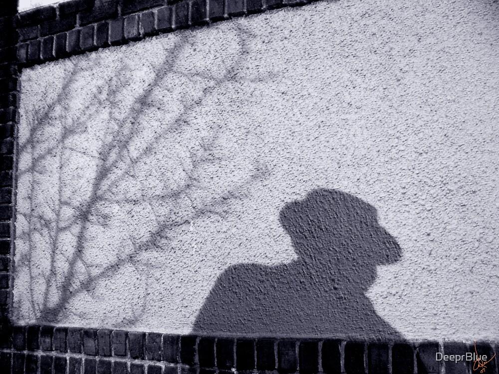 Shadow Lurking..... by DeeprBlue