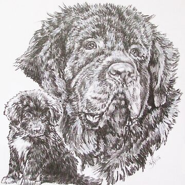 Newfoundland and Pup by BarbBarcikKeith
