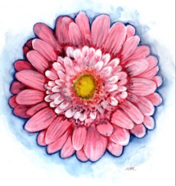 Shimmy (Pink Gerbera) by sweetscent62