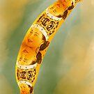 Queen banana by lisamoro