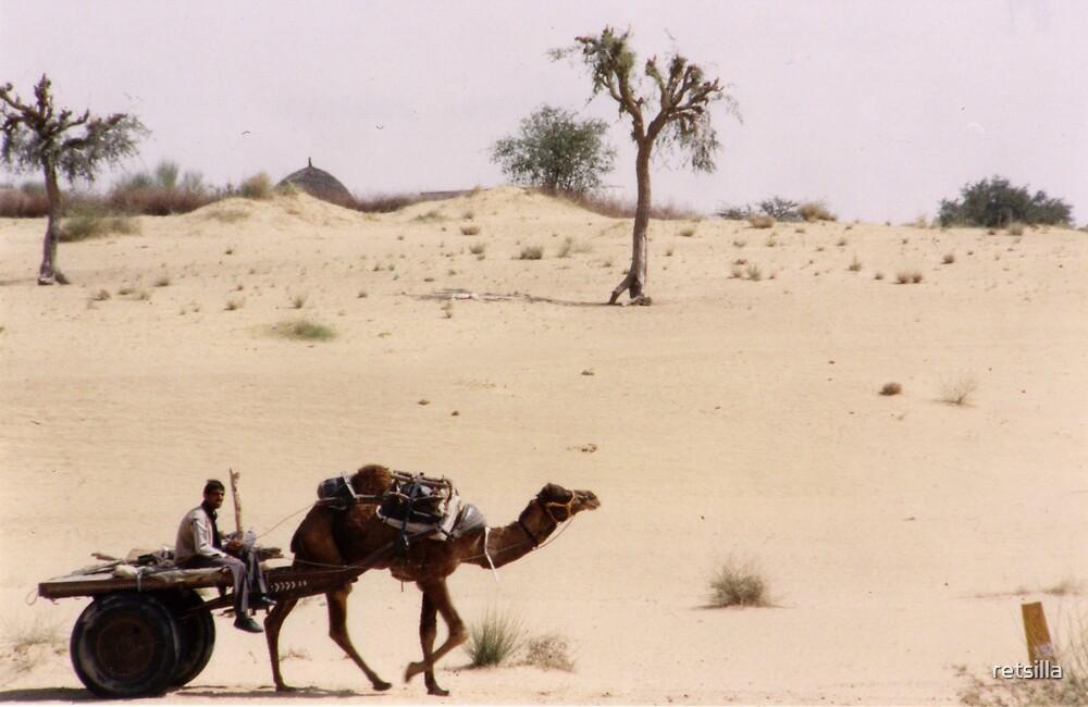 Thar Desert, Rajasthan, India by retsilla