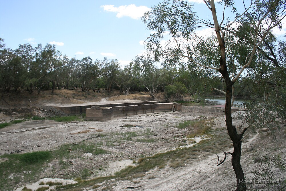 Upstream View of the Bourke Weir During January 2007. by Ross Campbell