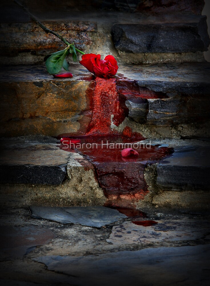 Loves Me Not by Sharon Hammond