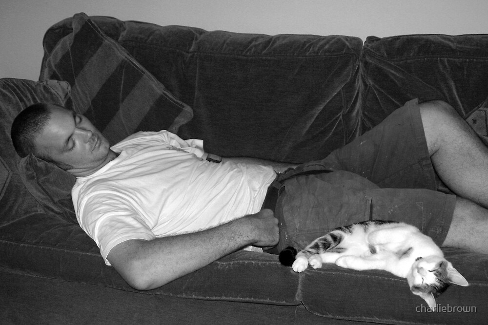 Cat Nap by charliebrown